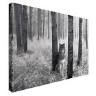 Wolf in the Woods Canvas Art Cheap Wall Print Home Interior