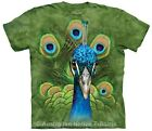 Vibrant Peacock Adults T-Shirt, Beautiful Bird Design - Select Size 12-28! NEW