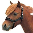 Weatherbeeta Roma Nylon Headcollar & Lead Rope Set PONY SIZE NEW
