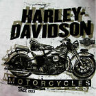 PAN HEAD Harley Davidson Dealer T-Shirt  30293658 $28.95 USD