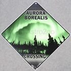AURORA BOREALIS CROSSING-Crosswalks Metal 12 X 12 Astronomy Science Glow Sign