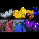 STON 30 LED Bubble Solar Festival Light Wedding X-MAS Light Party Garden Lamps