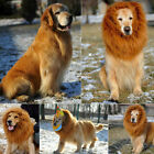 Pet Costume Lion Mane Wig For Dog Halloween Clothes Festival Fancy Dress Up New