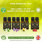Essential Oils Aromatherapy 20ml Pure Oil Therapeutic Natural Fragrance Diffuser