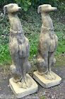 "Pair Whippet dog statues garden ornaments frost proof stone 73cm/29"" 'Seamus'"