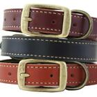 Auburn Leathercrafters Lake Country Stitched Leather Dog Collar Tan