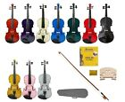 New Acoustic Student Violin Case Bow Rosin 2 Sets Strings 2 Bridges Pitch Pipe
