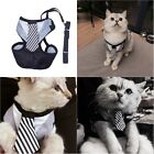 Teddy Chihuahua Fashion Dog Cat Harness Leashes Puppy Harness Soft S M L