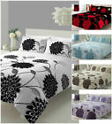 Printed Duvet Sophia Quilt Cover Set With Pillow Case in single double king size