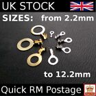 Brass Tinned Ring Terminals Wire Connectors Crimp Electrical Lug CableTerminal