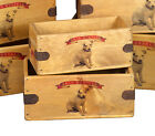 Jack Russell Vintage Box Dog Treats Great Jack Russel Gift Storage Crate Single