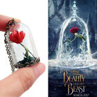 Beauty and the Beast Handmade Dried Flower Glass Bottle Pendant Chain Necklace