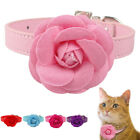 Big Flower Studded Pet Dog Collar Necklace Bling Diamante Buckle XS S M