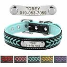 Braided Personalized Dog Collars Custom Engraved Dog Name Plate with ID Tube
