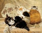 Ronner Kittens At Play Friends Cotton Quilt Block Multi Sizes FrEE ShiPpinG (R3
