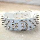 Leopard print Leather Spiked Studded Dog Collar for Pitbull Bully Terrier