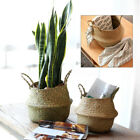 Nursery Laundry Foldable Bag Seagrass Belly Basket Storage Plant Pot Room Decor