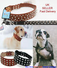DOG COLLAR Belt SPIKED Studded Neck PU LEATHER STRONG COLLAR For Any Large Dog
