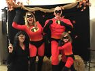 SUPERHEROES Family Coordinated Costume THE INCREDIBLES Deluxe Matching Adult Kid