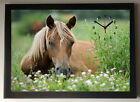 Sitting Horse A4 Picture Clock