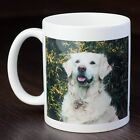 Golden Retriever Mug  - Dog Breed, Christmas/Birthday Gift