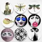 8 Inch Vintage Fornasetti Plates Decorative Wall Plates Dishes Home Background