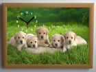 Labrador Puppies A4 Picture Clock