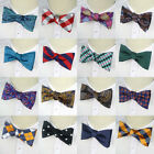 Silk Mens Self Tied Bow Tie Adjustable Bowtie Self-tied ties Paisley Butterfly