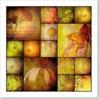 Collage Album Nature, Flowers And Art Print Home Decor Wall Art Poster - H