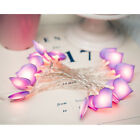 Decorative Heart String LED Fairy Lights Wedding Christmas Marriage Proposal US