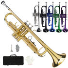 New 3 Colors School Student Band Brass B Flat Bb Trumpet with Case for Beginner