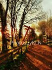 Sunshine through the trees Photo Photograph Greeting Card Countryside