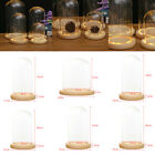 Decorative Clear Glass Display Dome With LED Wooden Base Gift Wedding