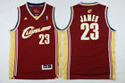 Lebron James 23 Cleveland Cavaliers Mens Red Champagne Rookie Throwback Jersey