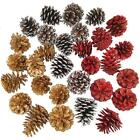 30Pcs Assorted Natural Pinecones Frosted Gold Red Pine Cones Ornaments Christmas