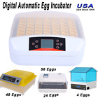 Digital Egg Incubator Hatcher Temperature Control Automatic Turning Chicken