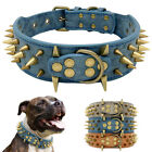 Spiked Studded Leather Dog Collar for French Bulldog Pit Bull Boxer Heavy Duty