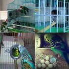 Внешний вид - Solid Wooden Budgerigar Parrot Nesting Breeding Box Bird Nest Cage Incubator Lef