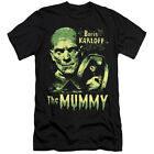 UNIVERSAL MONSTERS THE MUMMY Licensed Adult Men's Graphic Tee Shirt SM-6XL