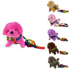 NEW KID BATTERY OPERATED BARKING WALKING CUTE PUFFY FLUFFY PUPPY DOG TOY  LEASH