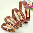 Leather Personalised Dog Collar Nameplate Custom Engraved Pet Collar Brown XS-L