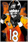 Denver Broncos Peyton Manning Great 13x19 Colorado Football Cool Art Poster Vols $11.99 USD on eBay