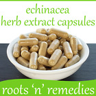 Echinacea Purpurea Herb Extract 450mg (20:1 Equivalent to 9000mg Whole Herb)