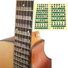Guitar Scale Stickers For Electric Guitar Colorful New T7c9 Stickers T6o2