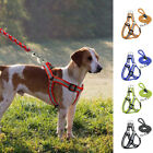 Reflective Nylon Dog Harness and Leads Leash Set for Small Dog Puppy Walking