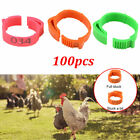 100Pcs Poultry Bands Foot Ring Leg Clip Adjustable For Chicken Duck Bird Pigeon