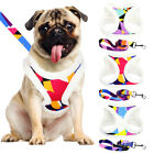 Step-in Dog Harness and Leash set Pet Cat Puppy Chiahuahua Walking Jacket Coats