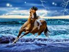 DIY Horses Full Drill 5D Diamond Painting Cross Stitch Pictures Kits Home Decor