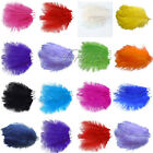 "10PCS Ostrich Feathers approx 8""-10""/ 20cm-25cm Wedding Party Decorations"