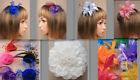 Fascinator Various Styles Flower Net Feather Sparkle Hat Comb Clip Wedding Prom